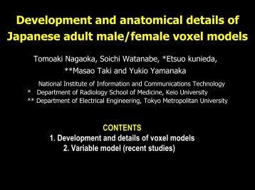 Female Voxel Models