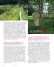 Oude paden Broedvogels bij het Leekstermeer Jaarverslag 2006 - Page 6