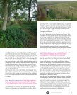 Oude paden Broedvogels bij het Leekstermeer Jaarverslag 2006 - Page 7