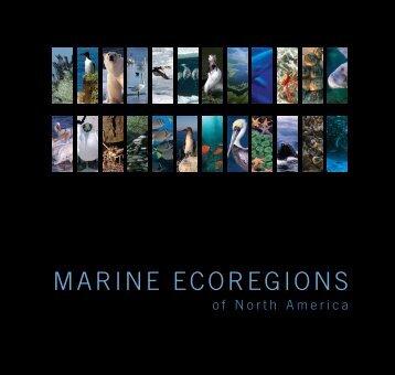 Marine Ecoregions of North America - Commission for ...