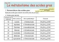 Le métabolisme des acides gras - IBMC