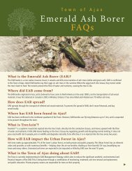 Emerald Ash Borer FAQs - Town of Ajax