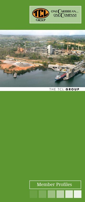 Group Booklet 2010 new.indd - TCL Group