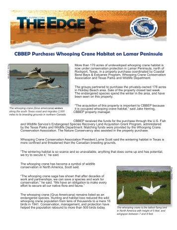 whooping crane land.indd - The Coastal Bend Bays & Estuaries ...