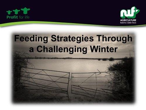 Feeding strategies through a challenging winter - Tom Hough ...