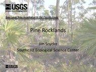 Pine Rocklands