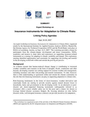 Workshop summary - Munich Climate-Insurance Initiative