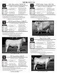 cows & calves - Page 3