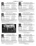 cows & calves - Page 6