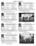 cows & calves - Page 7