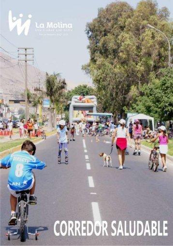 Anexo 1 - Municipalidad de La Molina