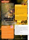 Octobre 2011 - Commune et mairie de Cabanac et Villagrains - Page 5