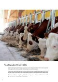 SYSTEMATISCH GUT - Rinder-Stalltechnik - Seite 2