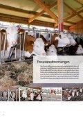 SYSTEMATISCH GUT - Rinder-Stalltechnik - Seite 6