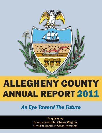 Full Report - Allegheny County