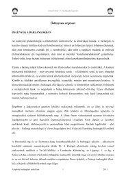 Őslénytan-régészet - Szegedi Karszt