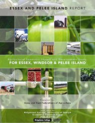 Agricultural Economic Impact and Development Study: For Essex ...