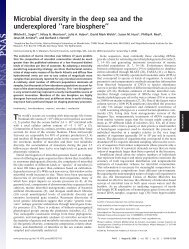 Microbial diversity in the deep sea and the underexplored ''rare ...
