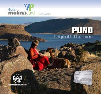 10dscto. - Municipalidad de La Molina