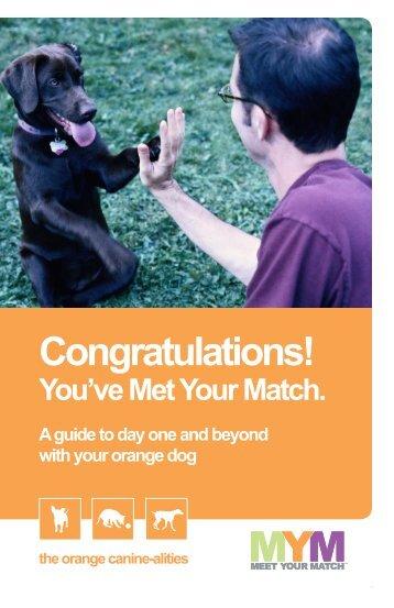 Orange Dog - McKamey Animal Center