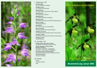 Die Orchideen Deutschlands - Orchideen-Kartierung