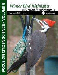 Winter Bird Highlights 2012 - Cornell Lab of Ornithology