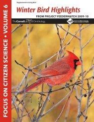 Winter Bird Highlights 2010 - Cornell Lab of Ornithology