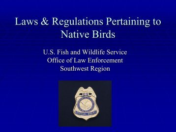 Laws & Regulations Pertaining to Native Birds - New Mexico Avian ...