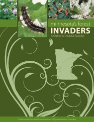 A Guide to Invasive Species - Minnesota Logger Education Program