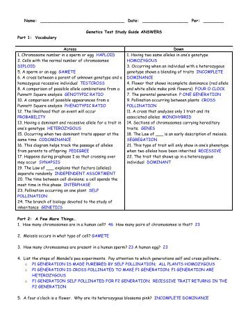 Genetics 240 study guide answers