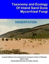 Taxonomy and Ecology Of Inland Sand Dune ... - Mycorrhizae