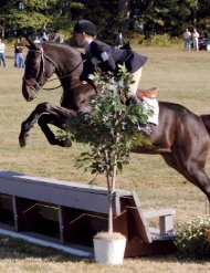 Eventing #6 pgs1-88.indd - United States Eventing Association