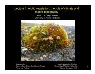 the role of climate and macro-topography - Alaska Geobotany ...