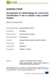 WORKING PAPER Development of a Methodology for Land Cover ...