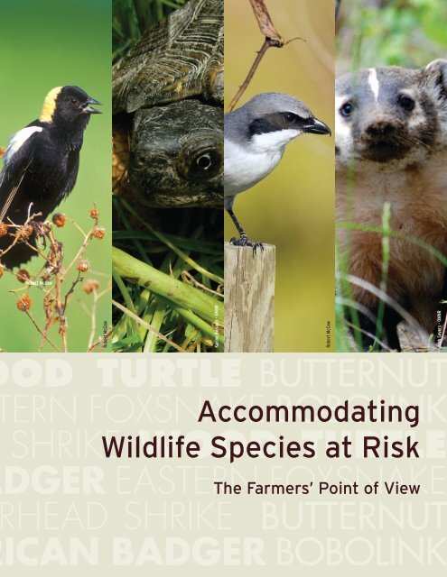 Accommodating Wildlife Species At Risk - From the Farmers