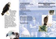 Faltblatt Wildvogelpflegestation - NABU Südeifel
