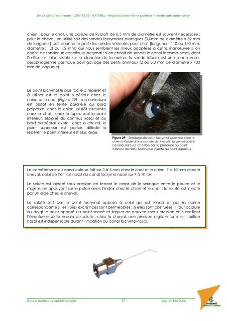 L'examen de l'œil et de ses annexes - Safari Tanzanie