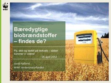 Bæredygtige biobrændstoffer – findes de? - Bioenergi