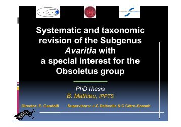 Systematic and taxonomic revision of the Subgenus ... - Medreonet