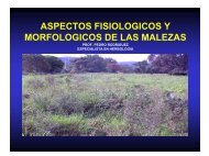 Aspectos Fisiológicos y Morfológicos de las Malezas