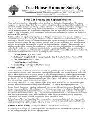 Feral Cat Feeding and Supplementation - Tree House Humane ...
