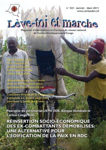 réinsertion socio-économique des ex-combattants ... - caritasdev.cd