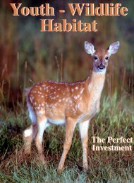 Youth-Wildlife-Habitat – The Perfect Investment - Whitetails Unlimited