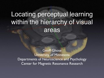 Locating perceptual learning within the hierarchy of visual areas