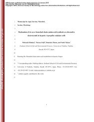 Mechanism of de novo branched-chain amino acid synthesis as ...