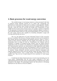 4. Basic processes for wood energy conversion - Nest