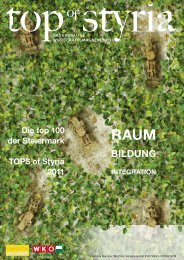 Download this publication as PDF - Top of Styria