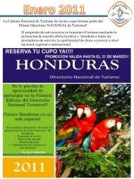 Boletín Informativo Enero 2011 - Cámara Nacional de Turismo de ...