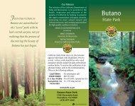Butano State Park - Meetup