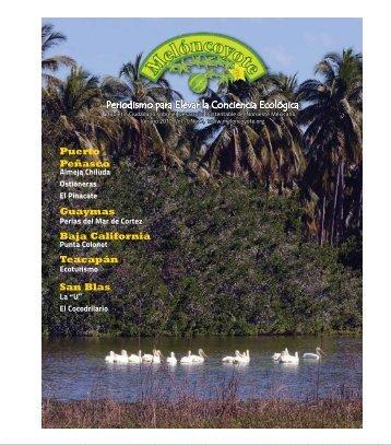 Periodismo para Elevar la Conciencia Ecológica ... - Meloncoyote